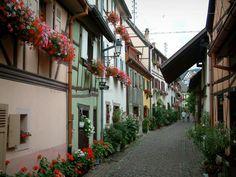 Equisheim: Eguisheim: Geplaveide straat vol met kleurrijke huizen met bloemen, planten en geraniums - France-Voyage.com