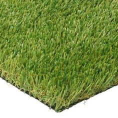 Transform your dull lawn into a plush, healthy green landscape with this amazing TrafficMASTER Lush Landscape Artificial Grass. Artificial Grass Rug, Small Artificial Plants, Fake Grass, Artificial Flowers, Lush, Backyard Putting Green, Lawn Turf, Grass Carpet, Landscape Solutions