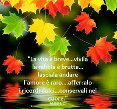 Life is short. live it ~ Anger is ugly.let it go ~ Love is rare.hang on to it ~ Memories are sweet.keep them in your heart! Italian Posters, Italian Quotes, Italian Proverbs, Quotes And Notes, Sicilian, Life Is Short, Poet, Being Ugly, Bella