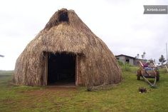 """Ruca"" (Casa de Indígenas Mapuches) in Teodoro Schmidt"