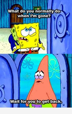 spongebob what do you do while i'm gone - Google Search