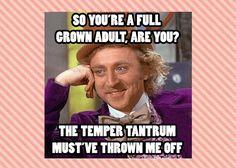 Adult Temper Tantrums 80