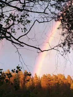 Sateenkaari Kumpuniemessä