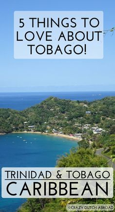 5 Things to love about Tobago! Beautiful beaches, crystal clear waters and rough mountain rides through the rainforest! - Crazy Dutch Abroad http://www.crazydutchabroad.com/destinations/Caribbean/Tobago/ travel the world | traveler | travel blogger | dream destination | traveling | inspiration | adventure | explore | tourism | leisure | holiday