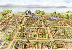Aluminium and Wooden Greenhouses – Greenhouse Design Ideas Homestead Gardens, Farm Gardens, Farm Layout, Wooden Greenhouses, Farm Plans, Victorian Life, Garden Illustration, Mini Farm, Vegetable Garden Design