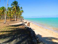 Patacho's Beach - State of Alagoas