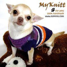 Purple Neon Dog Clothing Cat Clothes Personalized Pet by myknitt #myknitt #purple #poodle #maltese #diy #unique