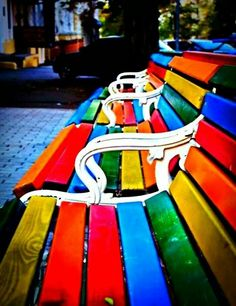 CANNELLE : Photo-----------Benches