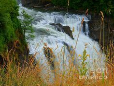 Spring Day Snoqualmie Waterfall by Photography Moments - Sandi