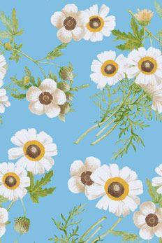 floral juliana azul - farmrio