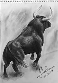 #sketch #charging_bull #bull #tattoo Bull Drawing, Hirsch Tattoos, Taurus Bull Tattoos, Charging Bull, Dinosaur Tattoos, Graphisches Design, Cow Art, Wildlife Art, Crayon