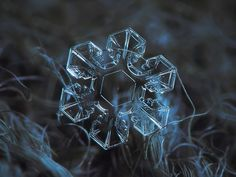 Snowflake macro photo: The core, very clear and symmetrical snow crystal, sparkling on dark blue textured background. Available as free download, print, ultra HD 4K wallpaper and commercial license.