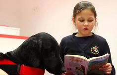 SOY BIBLIOTECARIO: Estos perritos ayudan a los niños lituanos a leer