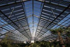 Invernaderos: otra aplicacion de paneles solares