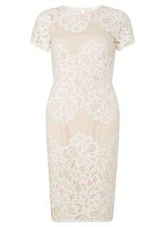 Ivory Lace Pencil Dress