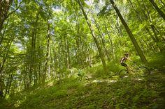 5 Training Tips for Mountain Bikers Mtb Training, Training Tips, Riding Mountain, Mountain Biking, Specialized Mountain Bikes, Indoor Cycling Bike, Norfolk County, Bike Brands, Adventure Activities