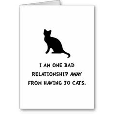 I am one bad relationship away from having 30 cats