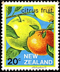 New Zealand.  FRUIT EXPORT.  CITRUS FRUIT.  Scott 762 A278, Issued 1983 Dec 7, Litho, 20c. /ldb.