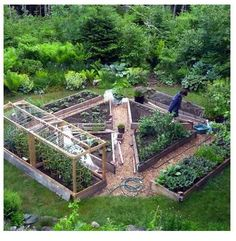 lovely structured vegetable patch surrounded by lush naturalistic plantings