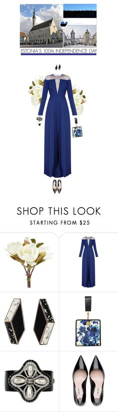 """Estonia's 100th Independence Day Celebration"" by helena99 ❤ liked on Polyvore featuring Pier 1 Imports, Temperley London, Tory Burch, Chanel, Monica Vinader, clutches, Gowns and Estonia"