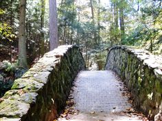 Bridge near Old Man Cave in Hocking Hills, let's put this on the list mik!