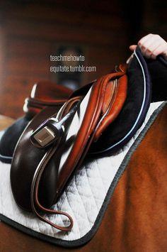 Equitation.  Ogilvy Equestrian Approved!  Equine, Half Pad, Saddle Pad, Helmet, Saddle, Fashion, Style, Comfort, Equipment, Tack, Horse, Pony, Gray, Chestnut, Bay, Black, Horse Show, Show Jumping, Equitation, Pony