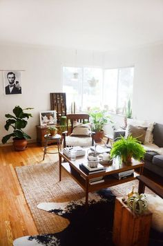 Genevieve & Ashley's Lush Shared Sanctuary. Rug, coffee table, couch, wood  this room.