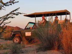 Game drive on Tutwa Oasis, South Africa, Safari, Monster Trucks, Wildlife, Environment, River, Game, Gaming