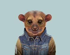 Yago Partal Zoo Portraits.
