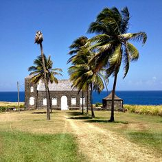 St Kitts in the countryside on the way to Kittitian Hill.