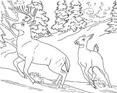 b90aa982fa01dfe10deb0909a646feaf coloring for kids coloring pages to print