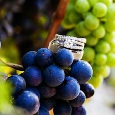 Pretty ring photo for a winery wedding