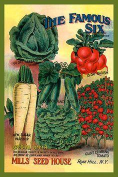Olde America Antiques | Quilt Blocks | National Parks | Bozeman Montana : Vegetables - The Famous Six