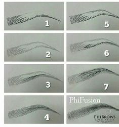 pelo a pelo (Eyebrow Makeup Step) - Microblading Eyebrows Sketch, How To Draw Eyebrows, Drawing Eyebrows, Makeup Drawing, Makeup Art, Drawing Techniques, Drawing Tips, Drawing Art, Drawing Ideas