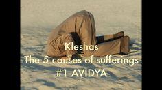 Kleshas, the causes of suffering; Avidya