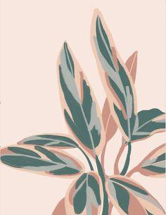 Plant Illustration, Digital Illustration, Guache, Plant Art, Diy Canvas Art, Photo Wall Collage, Illustrations, Pretty Wallpapers, Flower Art