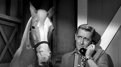"""""""Hello, I'm Mr. Ed"""" the talking horse with Wilbur his owner. 1960s tv"""