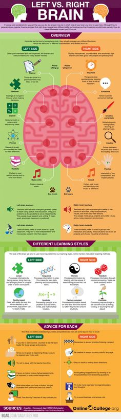 Interesting facts about the left & right sides of the brain.