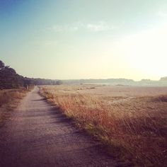 Lovely photo by Anna Piiroinen Malta, City Landscape, Archipelago, Norway, Sweden, Summertime, Travelling, Landscapes, Country Roads
