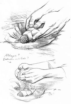 Posizionamento Venere di Willendorf