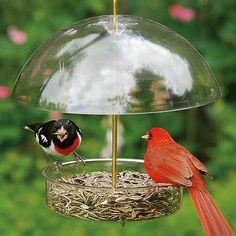 Bird Feeder Rod