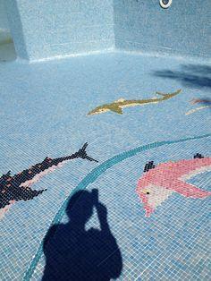 Mosaïque au fond de la piscine du #campingpegomas