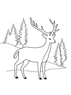 Deer At Pine Forest Coloring Page : Coloring Sun Forest Coloring Pages, Deer Coloring Pages, Coloring Books, Christmas Deer, Christmas Colors, Deer Outline, Deer Pictures, Online Coloring, Forest Animals