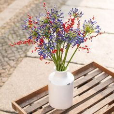 Frische Blumen für die Bodenvase - bis zum 21.12.2015: Agapanthus und  Ilex