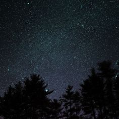 Papers.co wallpapers - ng57-night-sky-star-space-starry-wood-dark-romantic - http://papers.co/ng57-night-sky-star-space-starry-wood-dark-romantic/ - mountain, sky, space