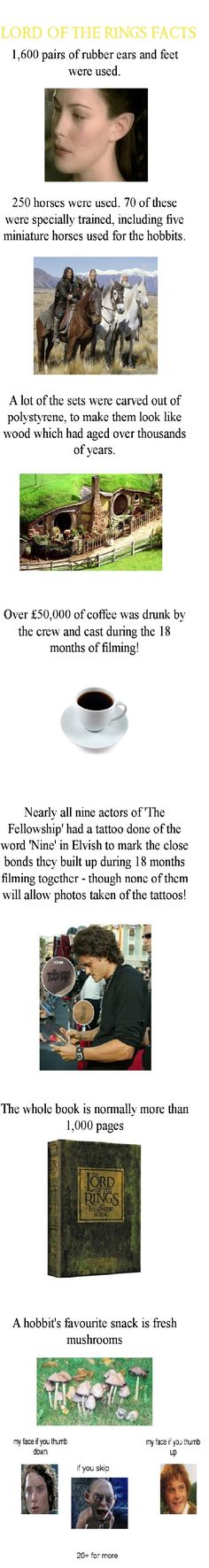 LotR facts ... lol, my presence would have made the amount of coffee drunk go up by another two billion :D:D:D