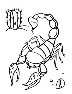 printable scorpion coloring page free pdf download at httpcoloringcafecom - Stingray Coloring Pages Printable