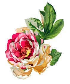 Pastel Flowers, Botanical Flowers, Botanical Prints, Vintage Flowers, Art Floral, Floral Prints, Bunch Of Flowers, Small Flowers, Flower Silhouette