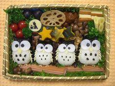 Owls onigiri bento