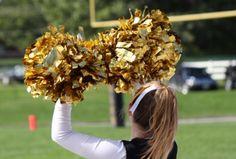 Tiny Tot Cheerleading Gladstone Park Chicago, IL #Kids #Events